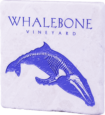 White Marble - Blue Whale Coaster